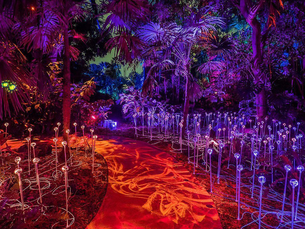 The Nightgarden Light Show Fairchild Tropical Botanic Garden Art In Public Places Light Show Fairchild Tropical Botanic Garden
