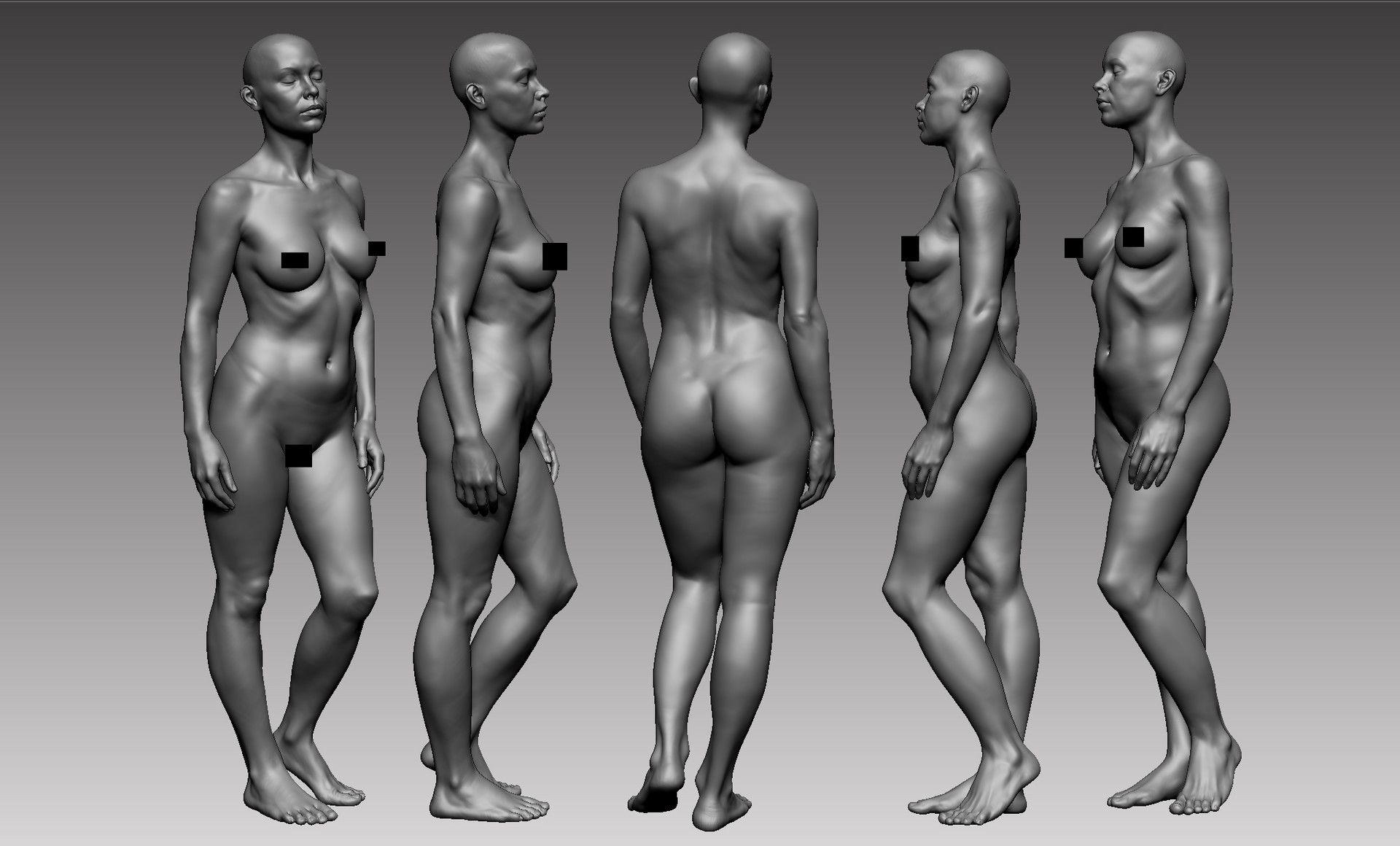 Female Teen Nude Anatomy
