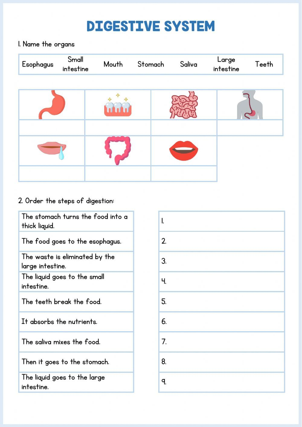 Digestive System Interactive And Downloadable Worksheet You Can Do The Exercises On In 2021 Body Systems Worksheets Digestive System Lessons Digestive System For Kids