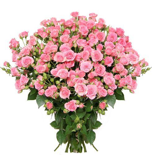 Клипарт доставка цветов подарок мужчине массаж