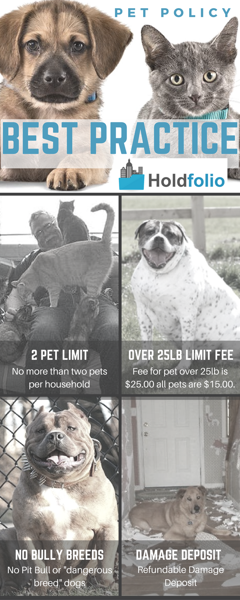 Do you have a pet policy with your tenants?  Holdfolio shares some ideas that we consider Best Practice when it comes to a pet policy. http://holdfolio.com