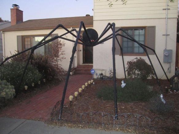 here it is in the front yardthis was right after we got it up - Giant Halloween Spider