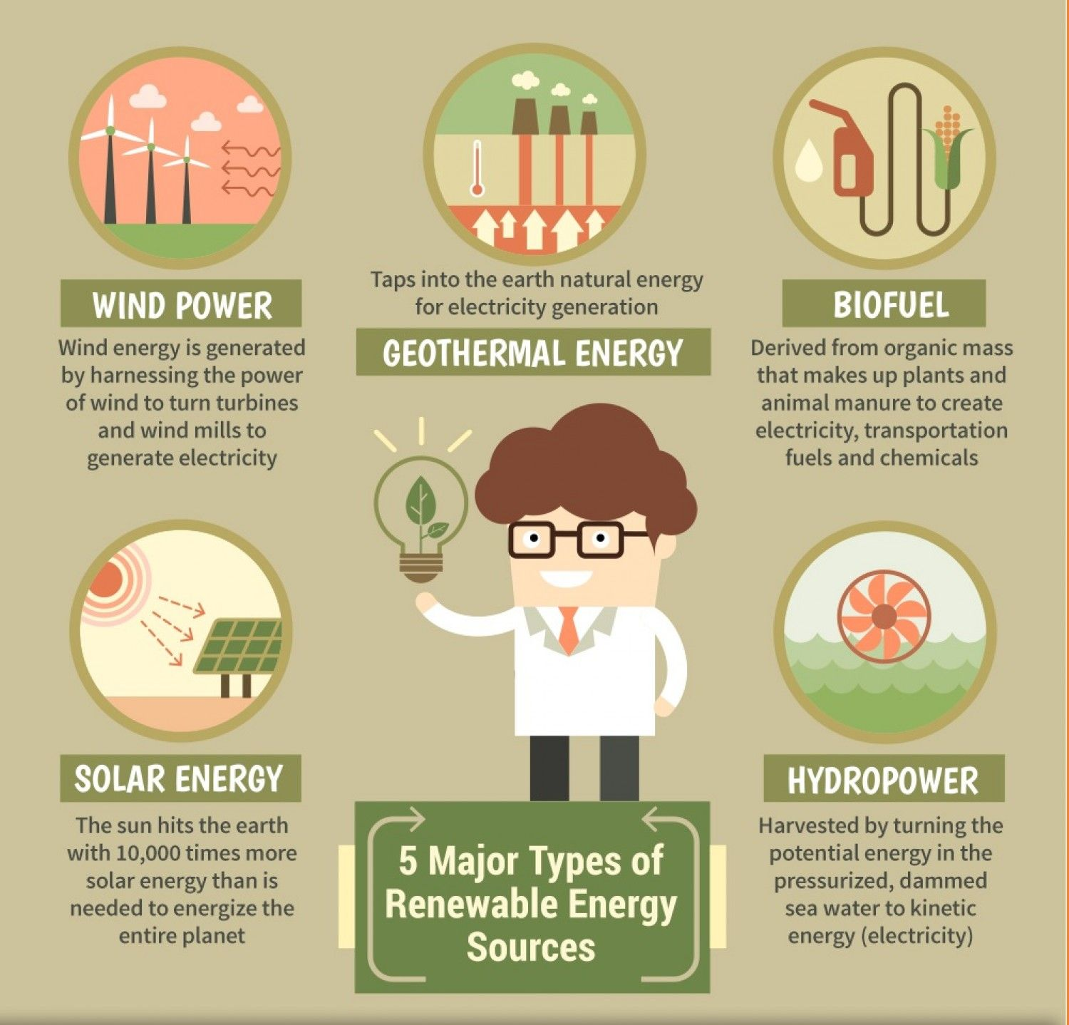 5 Major Types of Renewable Energy Resources Infographic ...