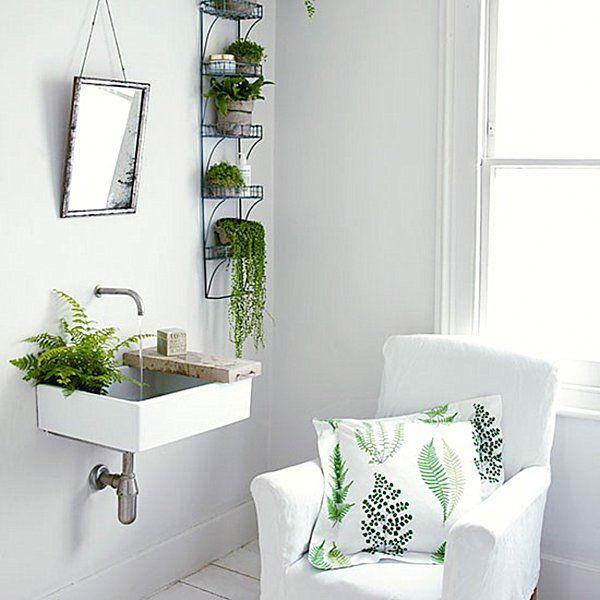 Decorar con flores el cuarto de baño - Cerca amb Google | Bathroom plants,  Living room green, Best bathroom plants