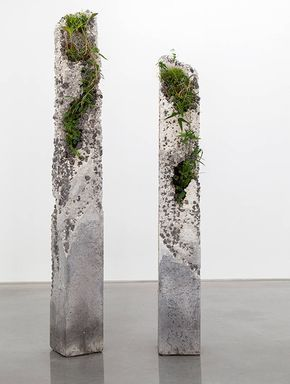 Sculptural Installations made of Concrete and Plants