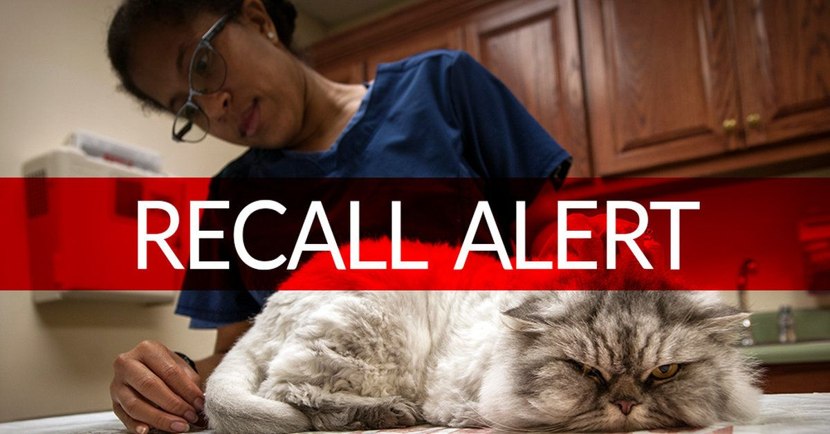 Breaking news raw cat food recalled after 30 cats