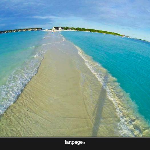 Un tappeto di sabbia divide il mare. Benvenuti alle Maldive