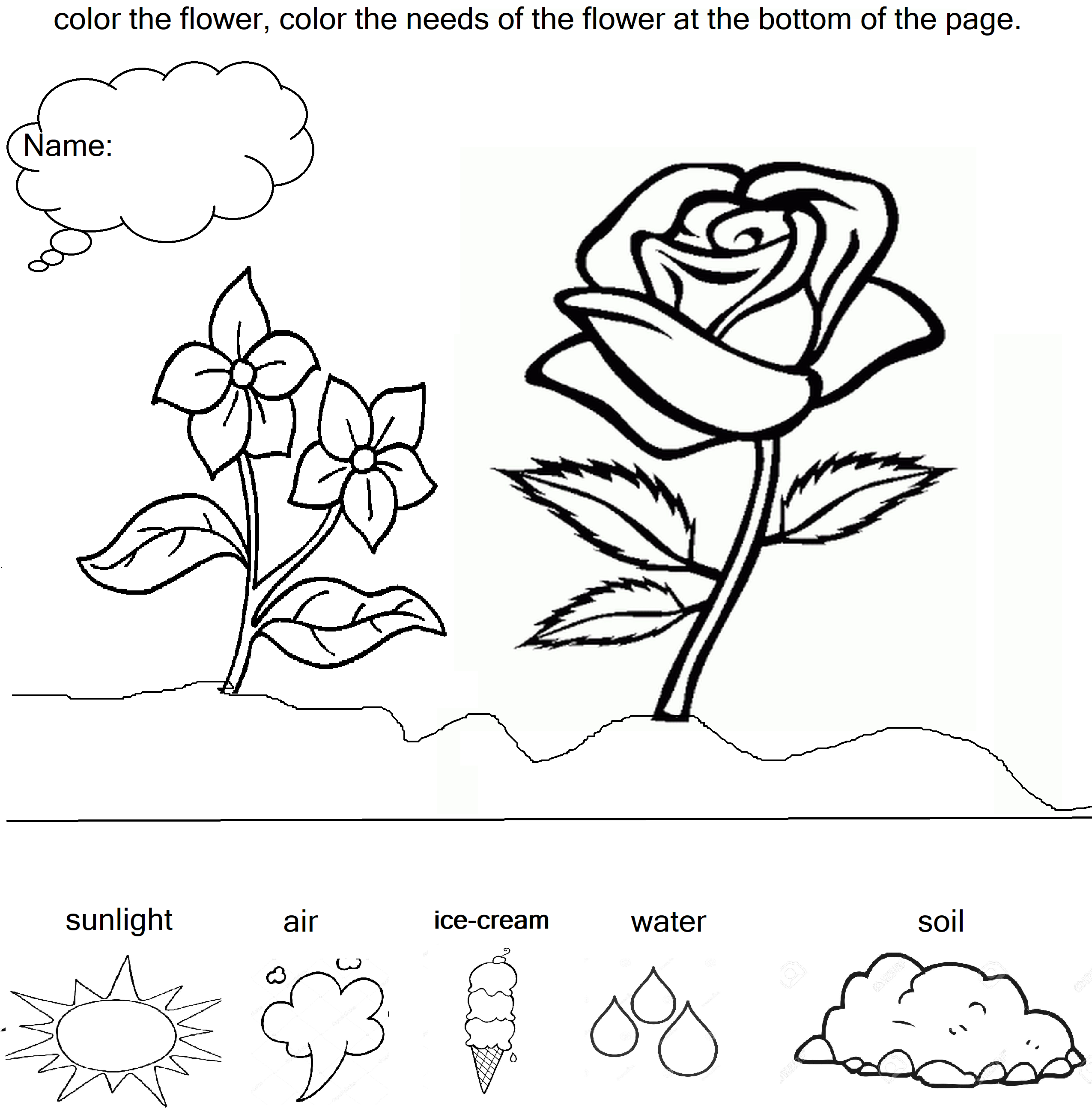 Plant Need Something For Grow Worksheet Grade 1 And 2