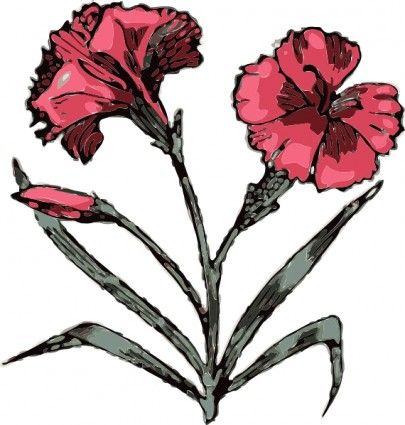 carnation flower clip art pinterest rh pinterest ca red carnation clip art carnation flower clipart