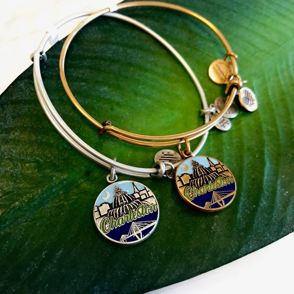 Alex And Ani Charleston Bangle Is A Best Er In 2019