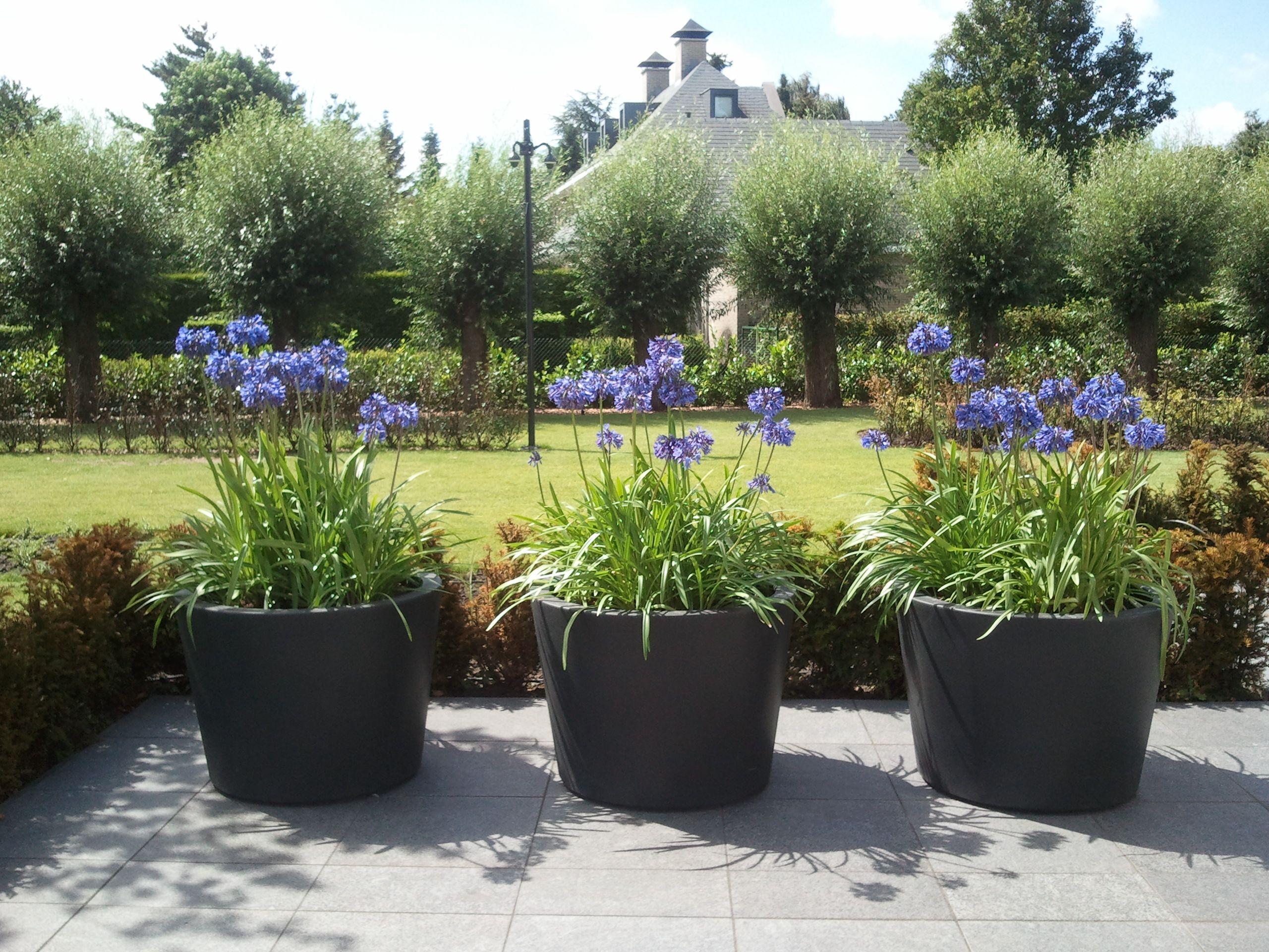 Strakke moderne bloempotten in een landschappelijke omgeving de losgroeiende beplanting zorgen - Moderne tuinfoto ...