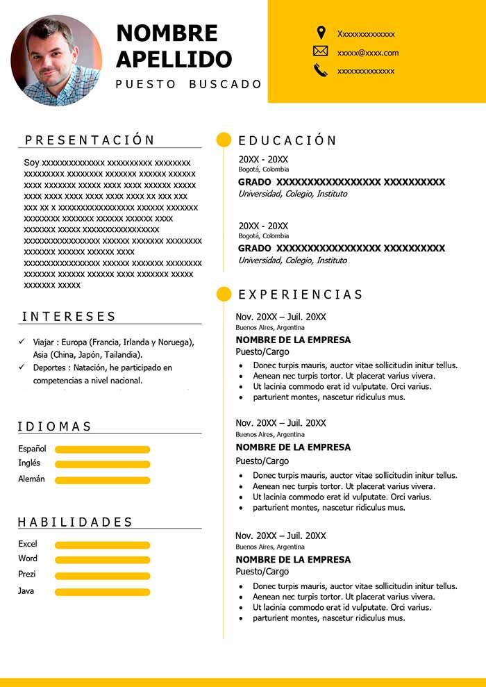 Formato De Curriculum Vitae En Espanol En 2020 Formato De