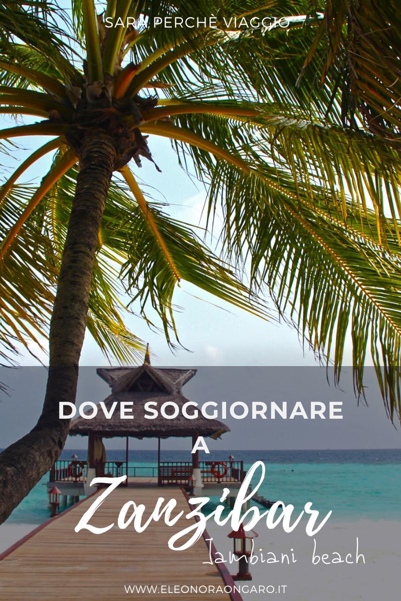 Dove soggiornare a Zanzibar | Idee di viaggio, Viaggi ...
