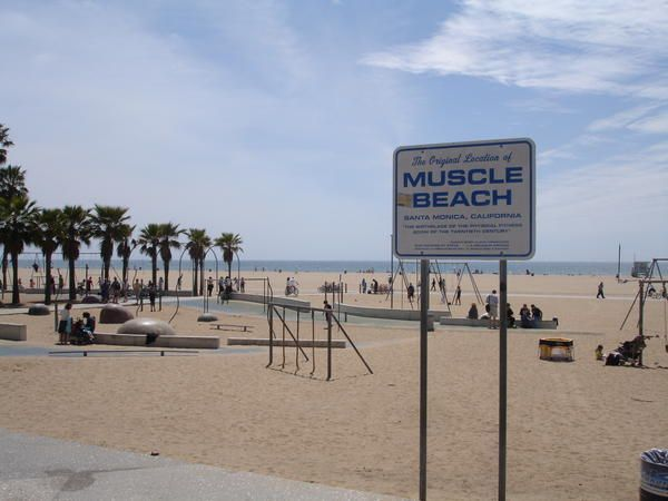 Muscle Beach Ca Us Venice