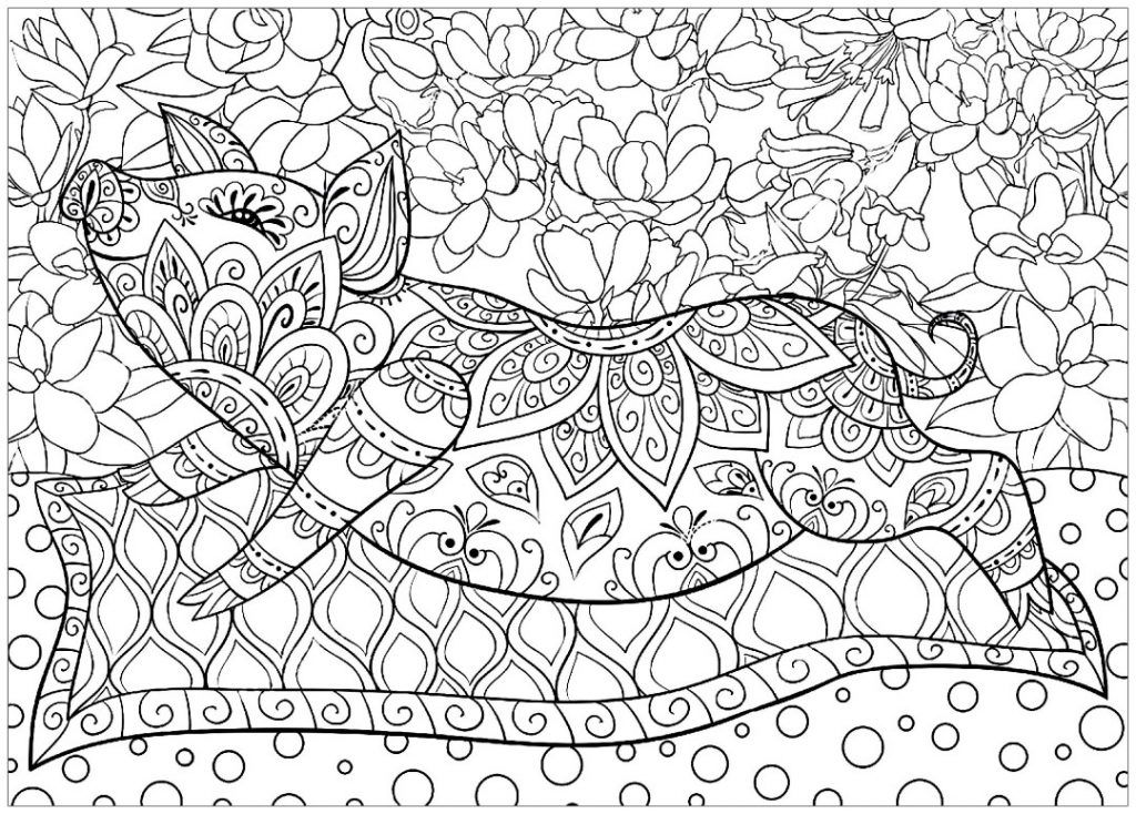 Pig Coloring Pages Elephant Coloring Page Adult