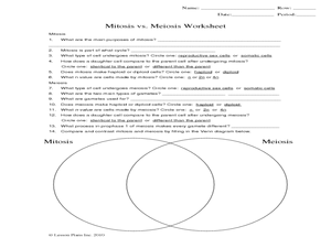 Mitosis vs. Meiosis Worksheet Worksheet | Hot Resources for ...