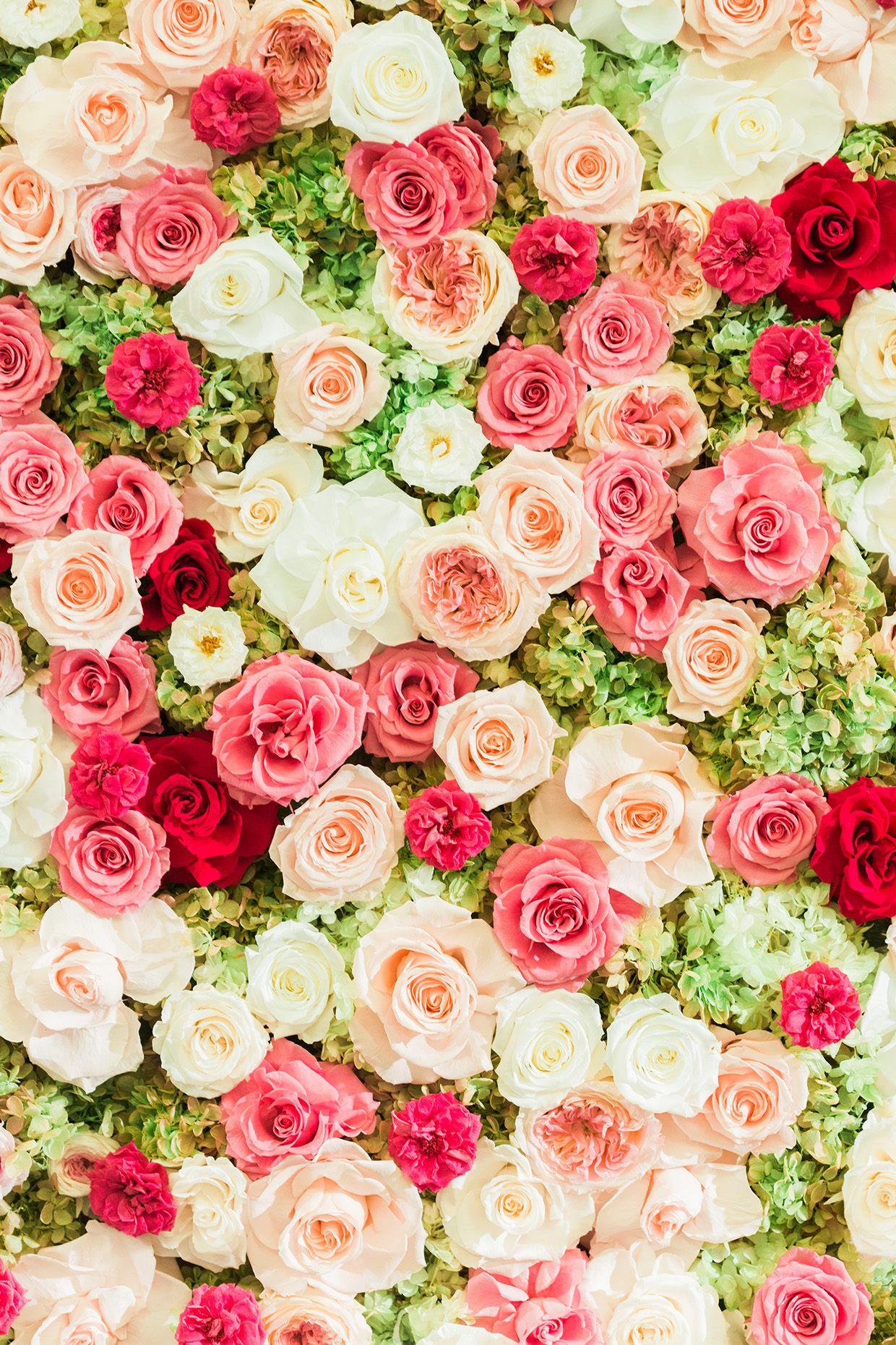 Everlasting Flower Wall 2015 Flower Phone Wallpaper Rose Flower Wallpaper Floral Wallpaper Iphone