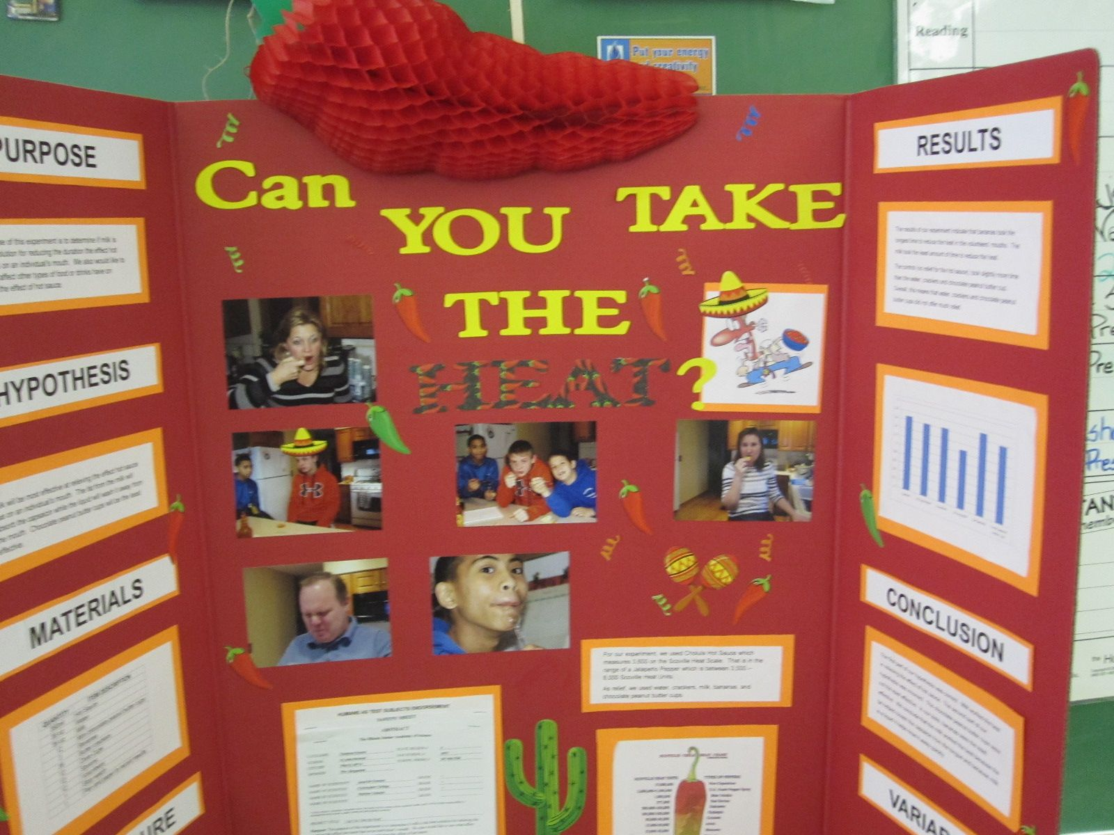 winning science fair projects for 8th grade