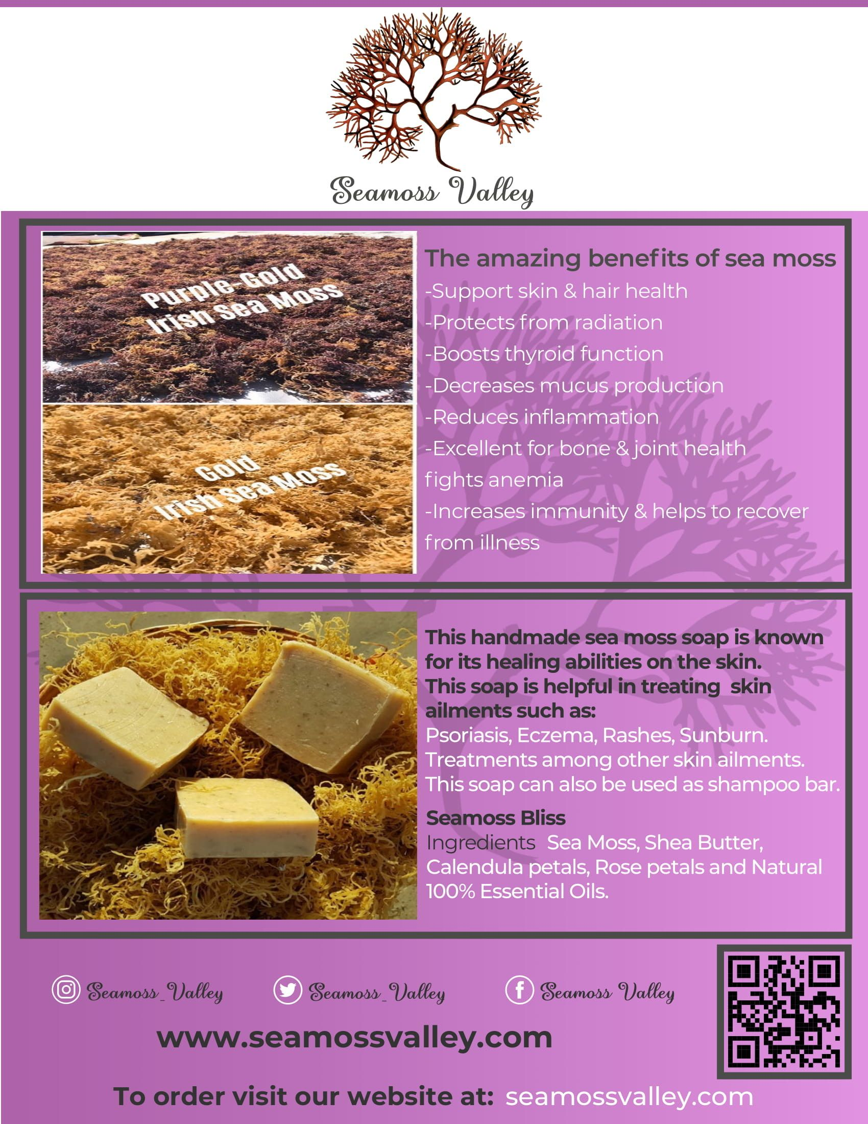 Seamoss Soap Sea Moss Raw Dog Food Recipes Seamoss Benefits