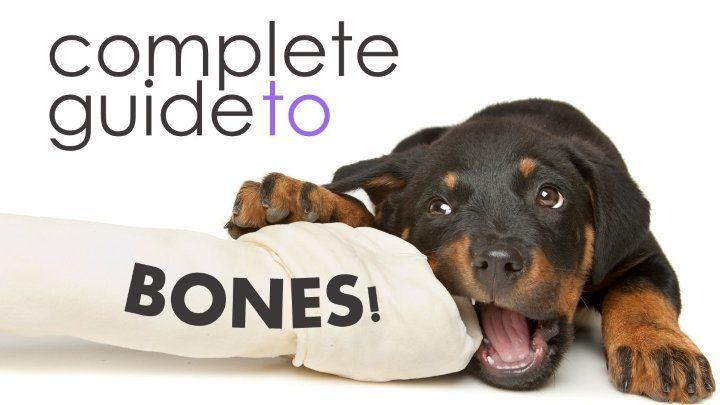 Top Rated Dog Bones Including Redbarn S Large White Bone Dog