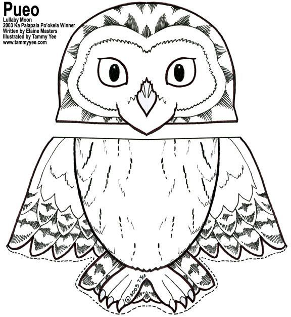 owl coloring pages free printables  malvorlage eule