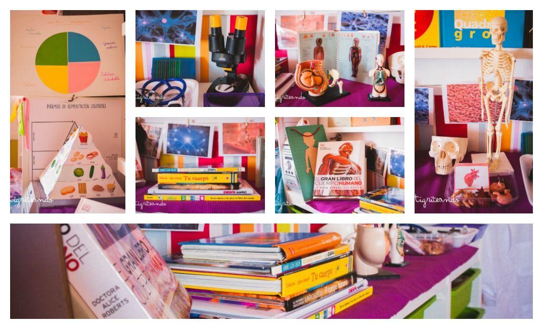 PicMonkey Collage m