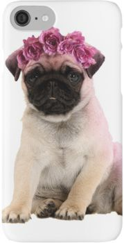Hipster Pug Puppy Iphone Case Cover Dog Behavior Pugs