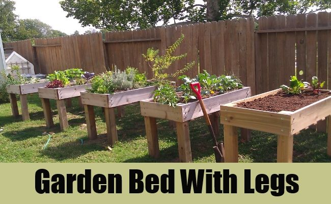 1000 images about Raised Garden Beds on Pinterest Gardens
