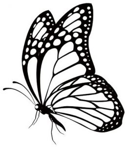 999 Butterfly Clipart Black And White Free Download Cloud Clipart Butterfly Clip Art Butterfly Black And White Butterfly Drawing