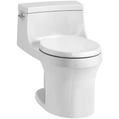 Aquia Dual Flush Elongated Two Piece Toilet Seat Not Included