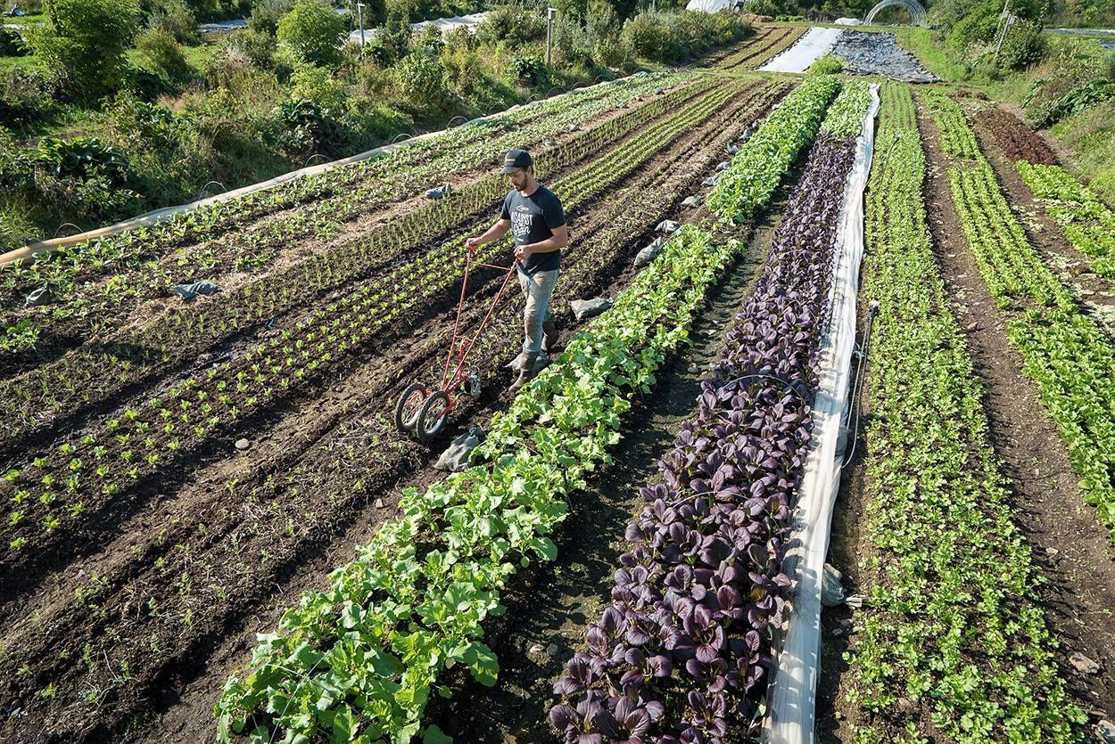 Make a SixFigure Salary by Farming, Says Canada's