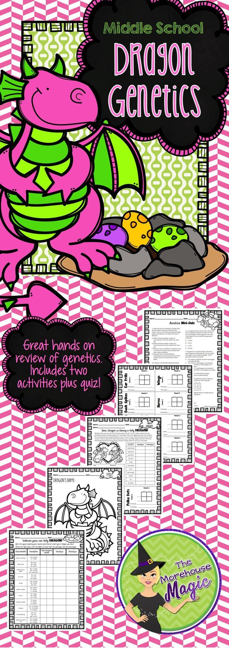 Collaborative Learning, Dragon Genotypes and