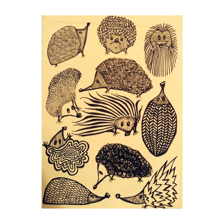 Hedgehog illustrations