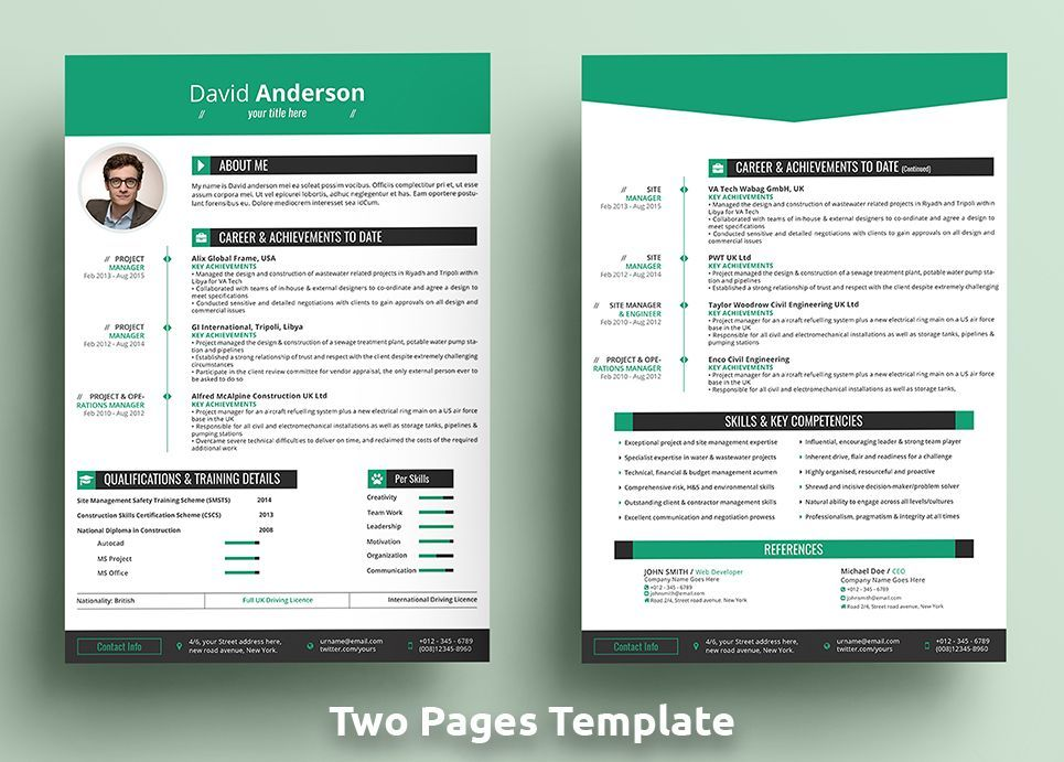 David Anderson Cv Professional Ms Word Format Resume Template Cv Professional David Anderson Resume Resume Template Cv Words Resume