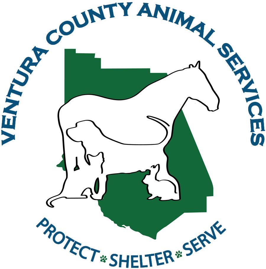 Ventura County Animal Services - 50 Photos & 40 Reviews ... |Ventura County Animal Services