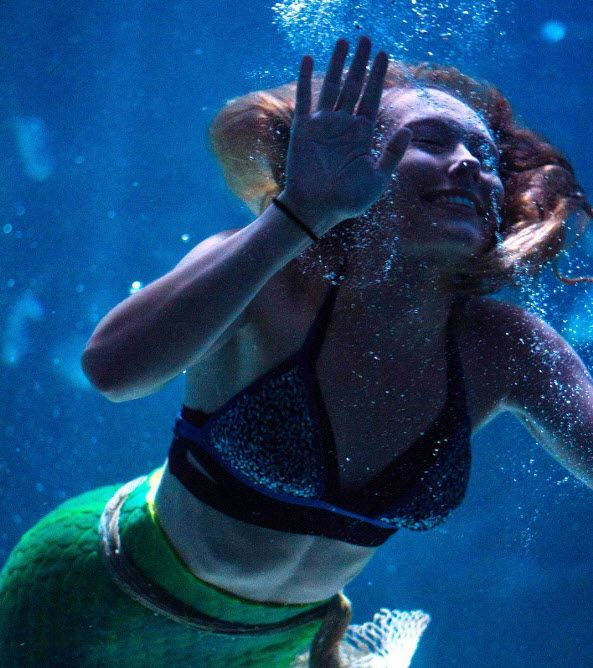 Catch The Ray Bay Mermaid Show At Ripley S Aquarium In Myrtle Beach South Carolina Photo Via Ig User Awseverson Click On Pin For Additional Info