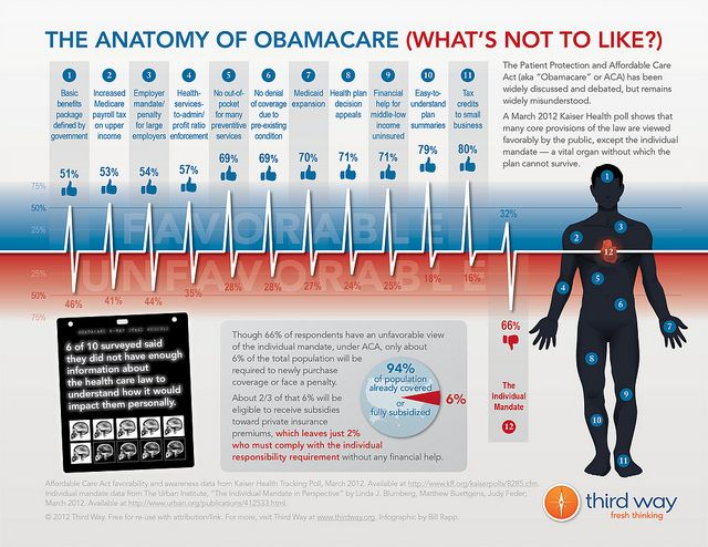 The Anatomy Of Obamacare What S Not To Like Green Card
