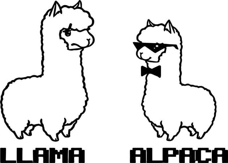 Llama And Alpaca Coloring Page Animal Coloring Pages Alpaca Stuffed Animal Cartoon Drawings Of Animals