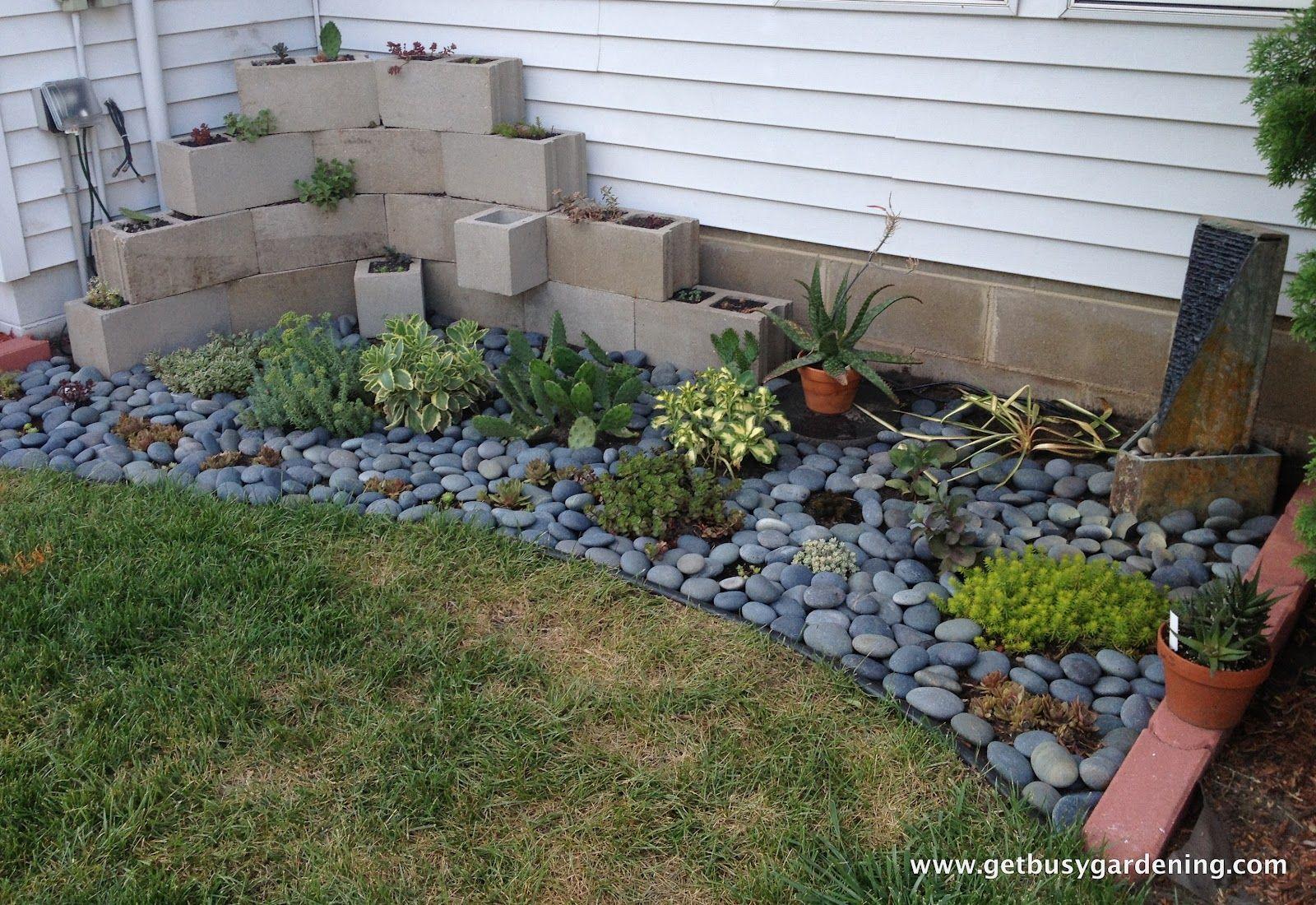 Succulent Zen Garden Garden Ideas 640 x 480