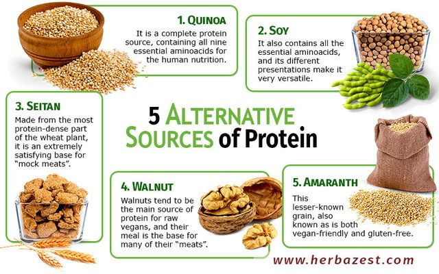 5 Alternative Sources Of Protein Health Nutrition Pinterest