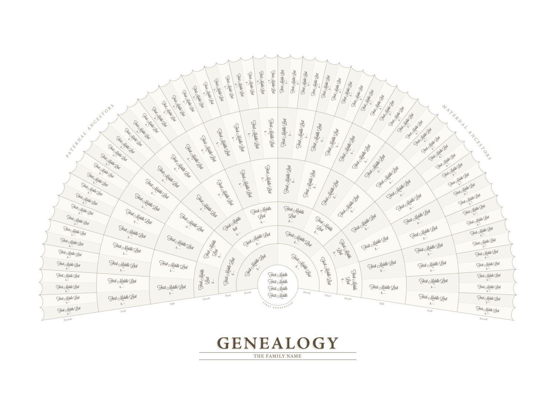 Genealogy Fan Chart Adobe Illustrator Template Family Tree