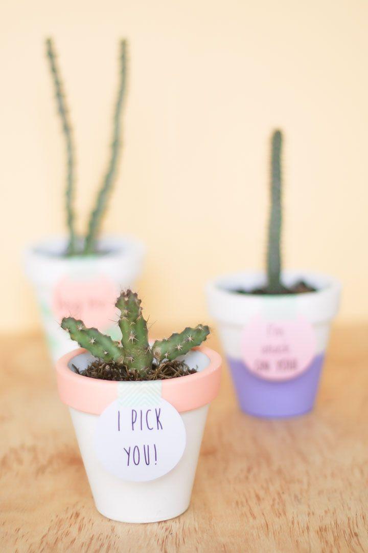Diy macetas decoradas para regalar en san valentin - Cactus en macetas pequenas ...