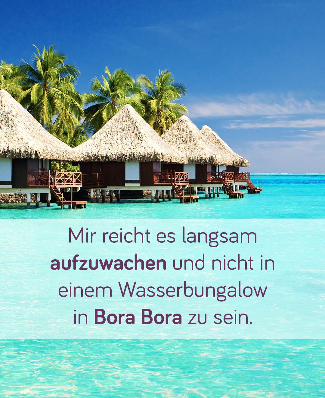 Urlaub Auf Bora Bora Gunstiger Urlaub Auf Der Trauminsel Wasserbungalow Bora Bora Gunstig Urlaub Machen