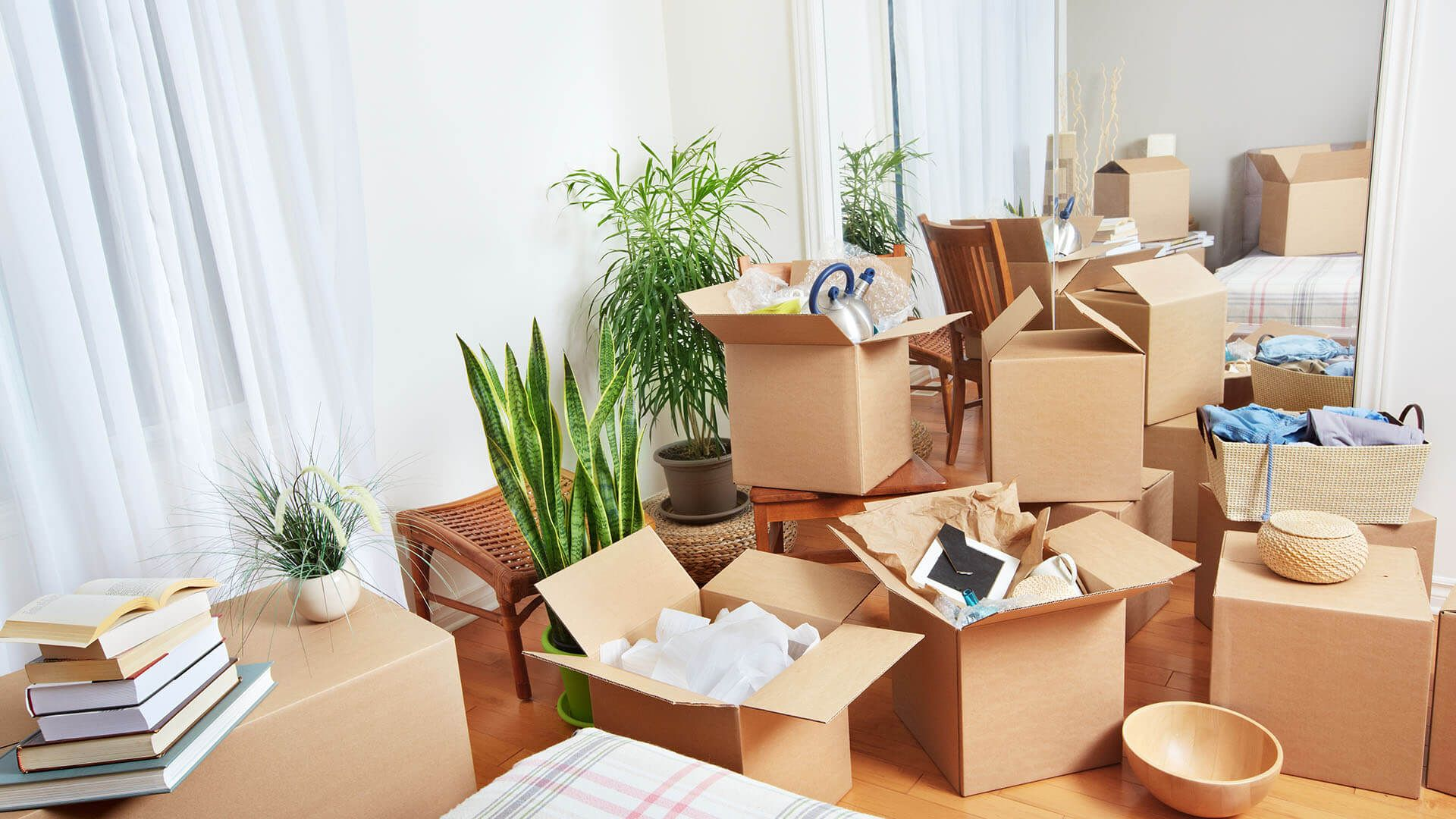 Steps in Packing Up Your Household Goods Before You Move | Furniture  removalists, Packers and movers, Moving house