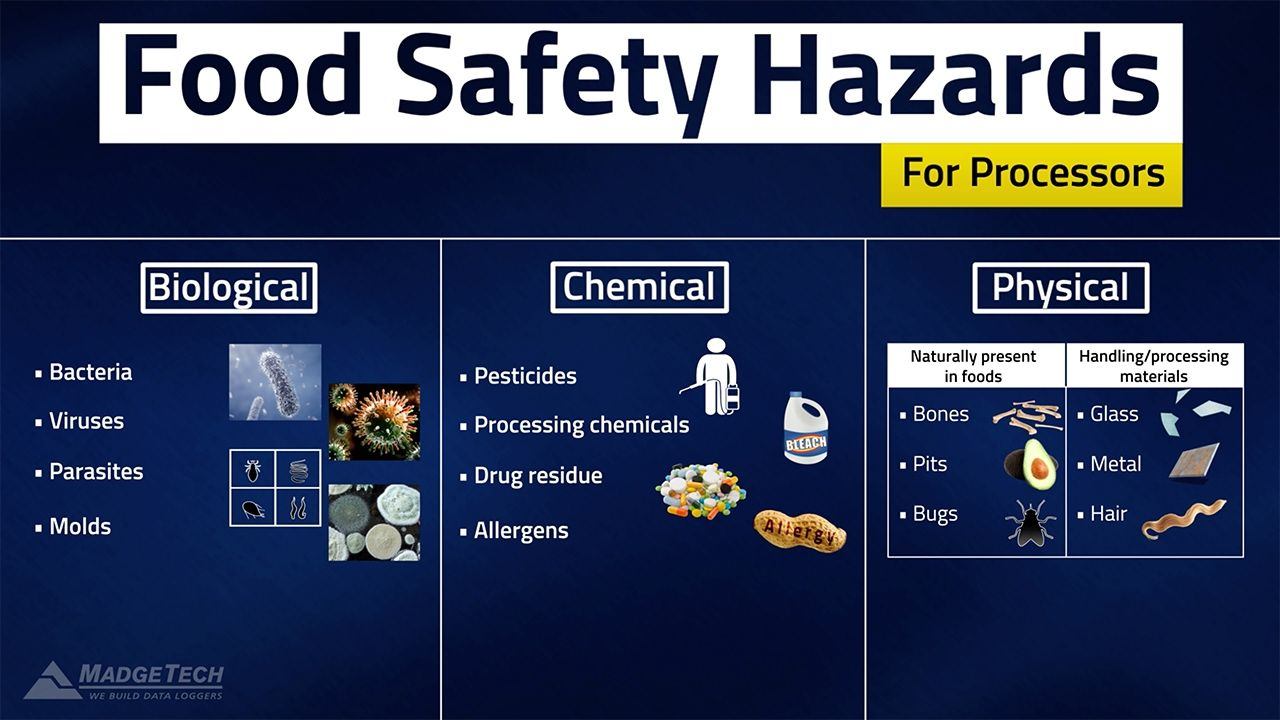 Haccp Food Safety Hazards Food Safety Food Processor Recipes Safety Hazards