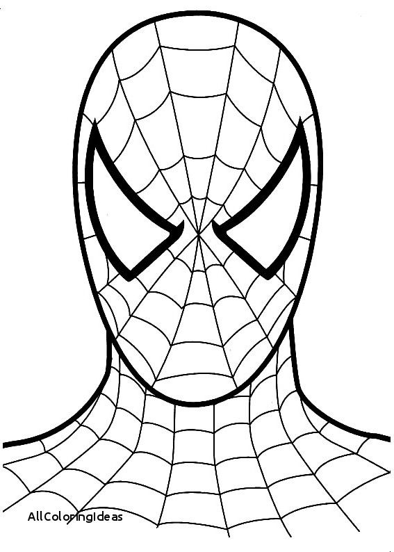 567x794 Best Of Lego Spiderman Coloring Pages Spiderman Coloring Spiderman Face Spiderman Cake