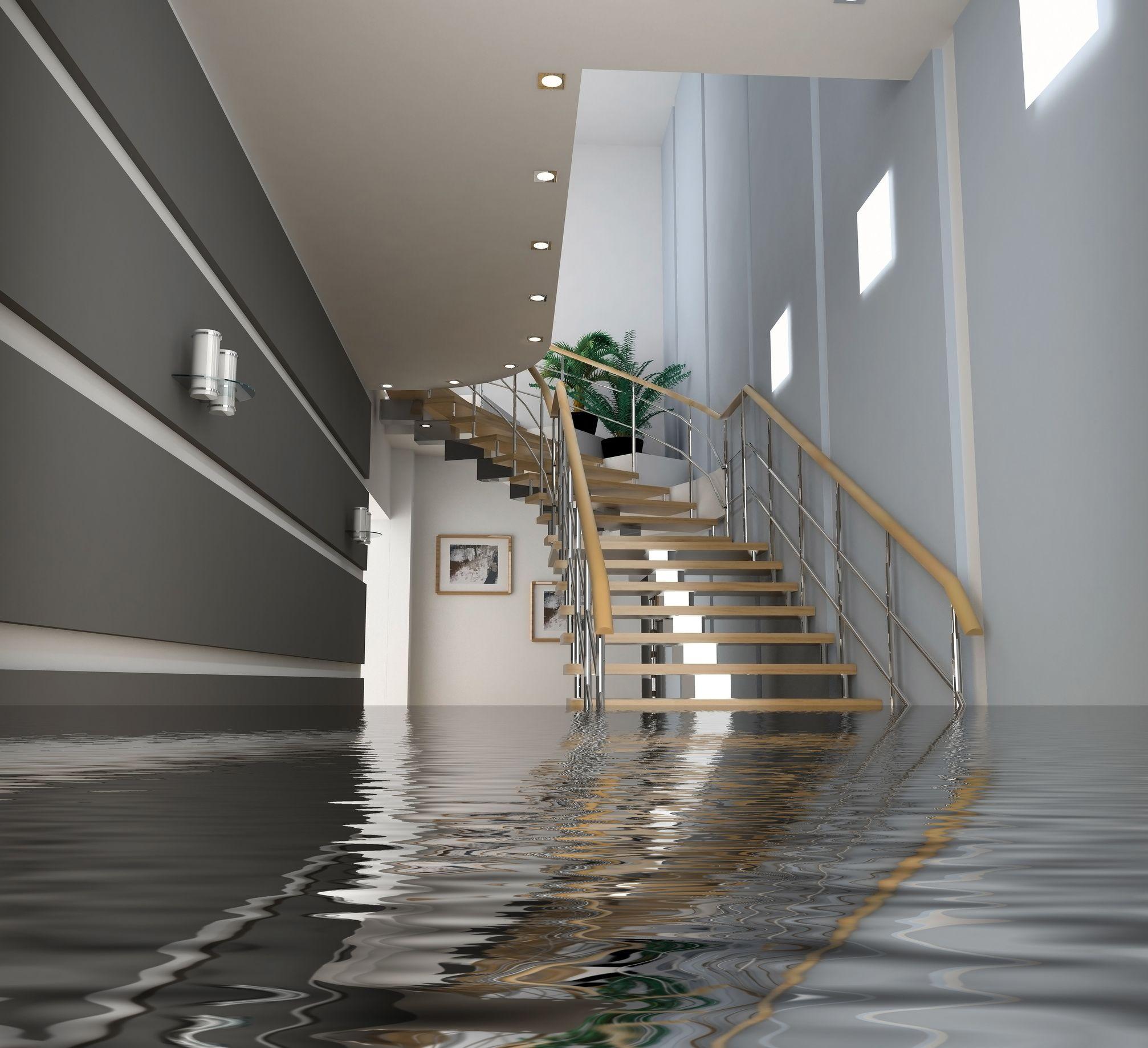 Basement: Affordable Basement Flooding What To Do Basement ...