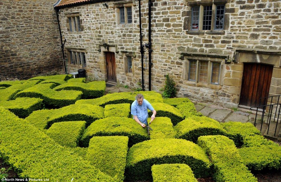 It 39 s a shear delight work finally begins on annual for Tudor knot garden designs