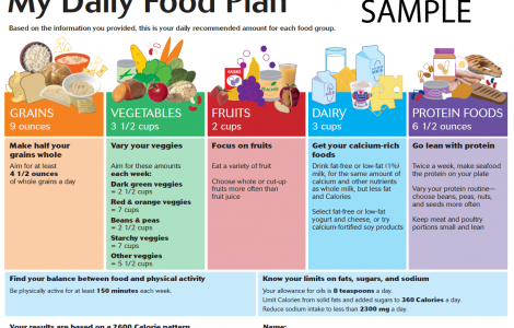 daily food chart template cool crafts in 2018 pinterest diet