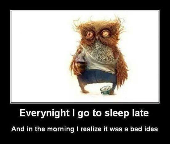 Night Owls Unite Sleep Late Go To Sleep Good Night Sleep Well